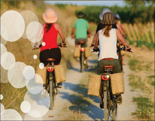 Visita Bicicleta eléctrica o convencional Vilarnau